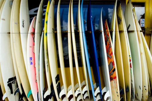 row-of-surfboards-ray-laskowitz