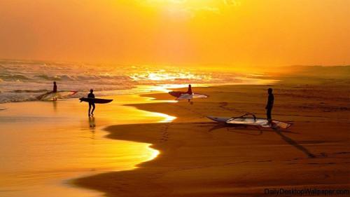 surfingknowledge
