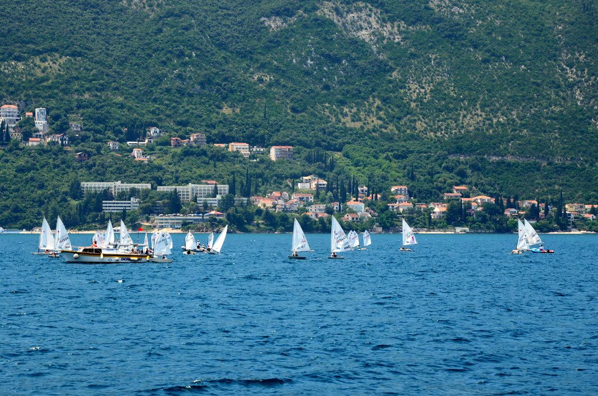 черногория, виндсёрфинг, доска, парус. ветер, волна