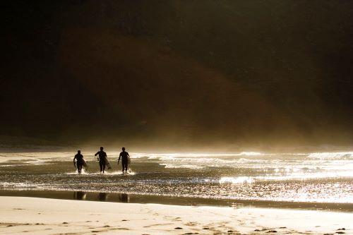 пляж,ходдевик, норвегия. серфинг, доска, волна